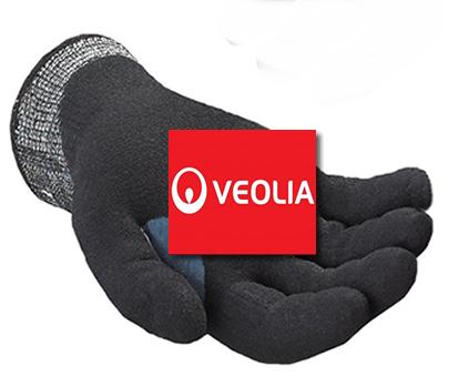 Veolia_Waste_CaseStudy